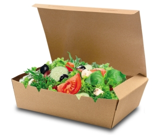 snack box pure mit klappdeckel gross braun. Black Bedroom Furniture Sets. Home Design Ideas